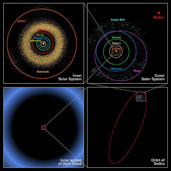 Sedna's orbit