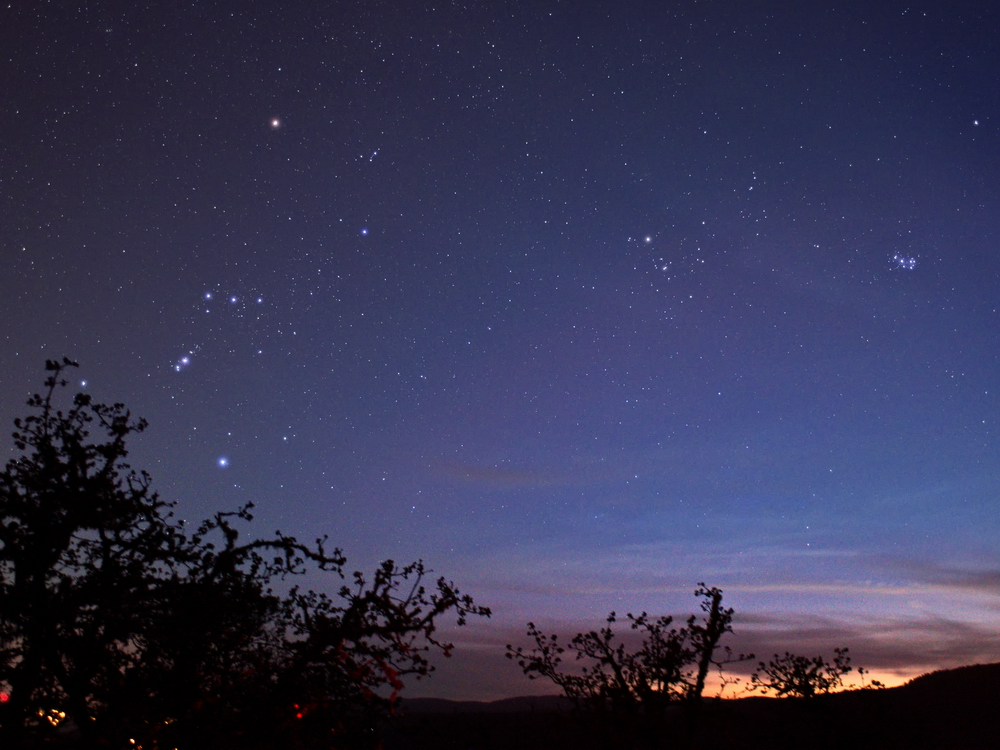 Orion in twilight