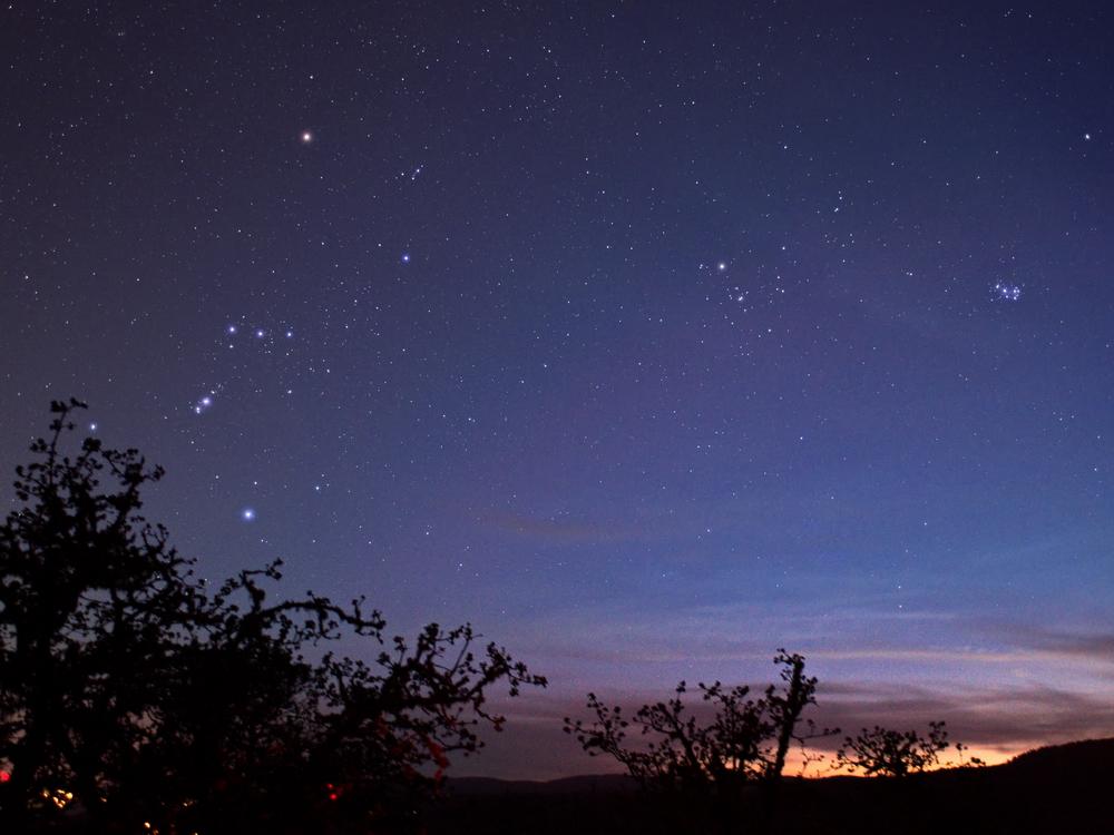 Orion in twilight