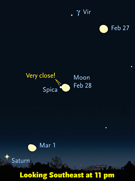 Close Spica-Moon conjunction