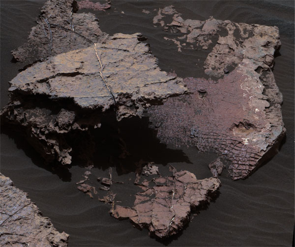 Squid Cove rock slab on Mars