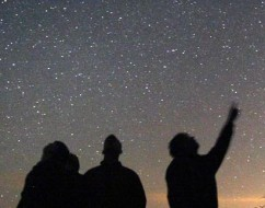 How many stars in the sky can you see from a pitch black sky? Bob King explores this in his informative article.