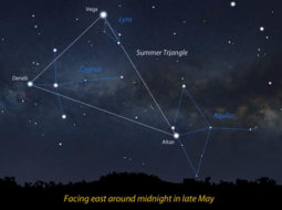 Illustration of Summer Triangle