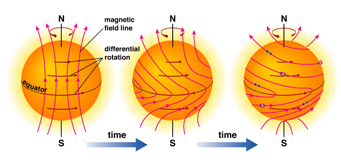 Sun's magnetic field: A Solar Cycle