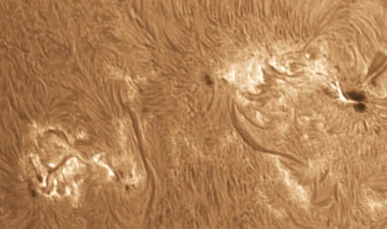 H-alpha view of AR 1785