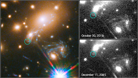 Supernova Refsdal's fifth image