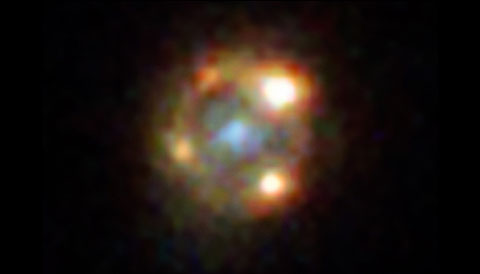 Supernova Einstein Cross
