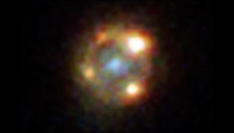 Supernova Einstein Cross