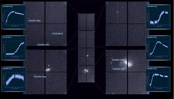 TESS first-light supernovae