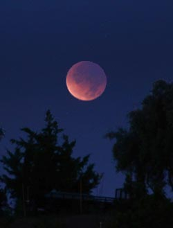 From Simi Valley, California, December 2011's totally eclipsed Moon hung just a few degrees above the western horizon. The southern half (lower left) of the disk, nearest the umbra's outer edge, is relatively bright. S&T: J. Kelly Beatty