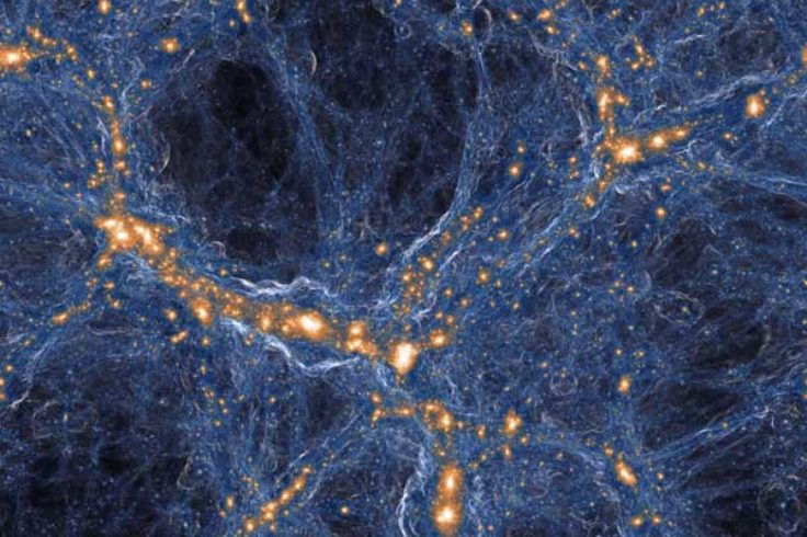 Dark matter vs. ordinary matter in IllustrisTNG