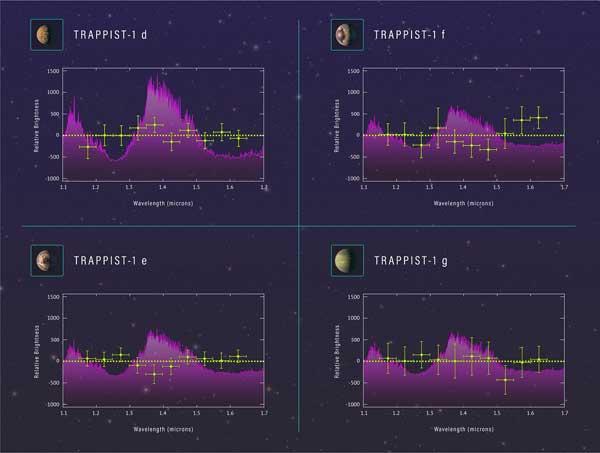 Transmission spectra for TRAPPIST-1d, e, f, g