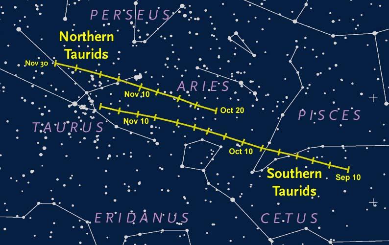 Taurid meteor radiants