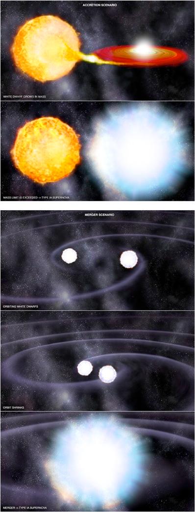 Type Ia Supernova Scenarios