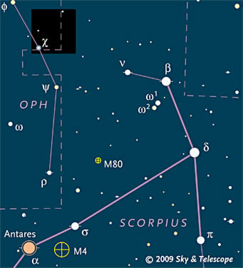 Head of Scorpius