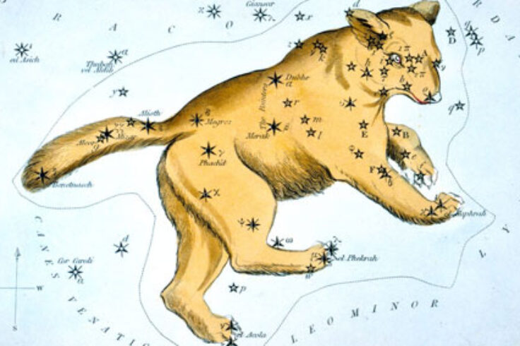 Ursa Major from Urania's Mirror