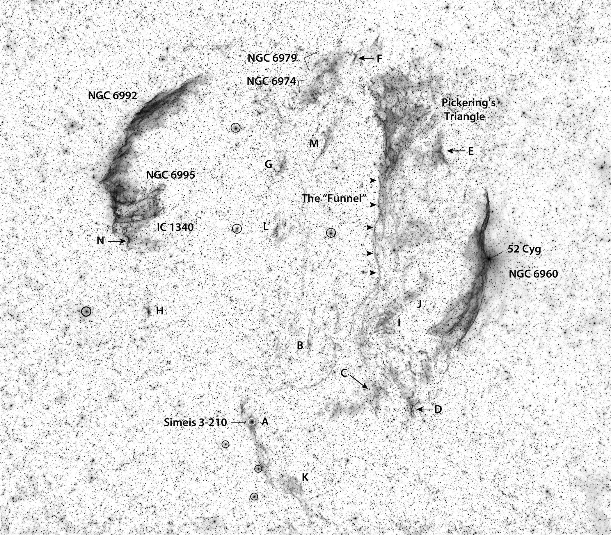 Veil-Nebula-Scott-Rosen-Invert-BW_labele