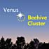 Venus and the Beehive