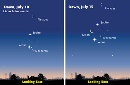Predawn grouping in July 2012