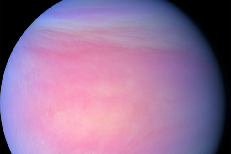 Venus in false-color