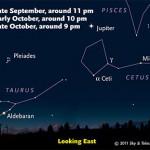 Sky chart for Mira