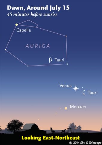 Venus and Mercury at dawn
