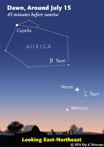 Venus and Mercury at dawn