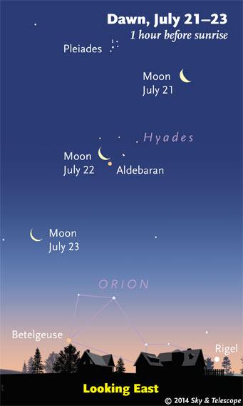 Waning Moon at dawn