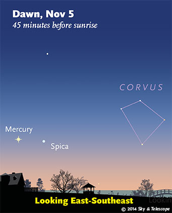Mercury and Spica at dawn, Nov. 5, 2014