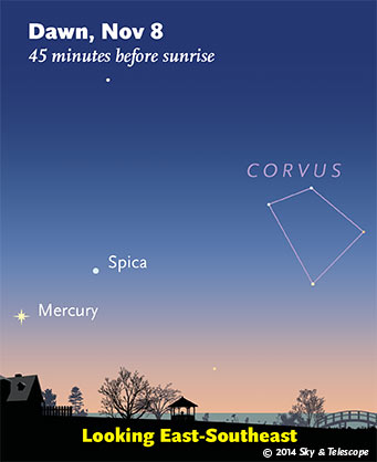 Mercury and Spica at dawn, Nov. 8, 2014