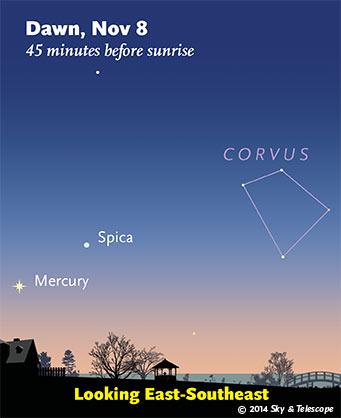 Mercury and Spica at dawn, Nov. 8, 2014