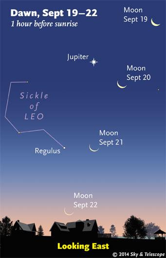 Moon and Jupiter at dawn