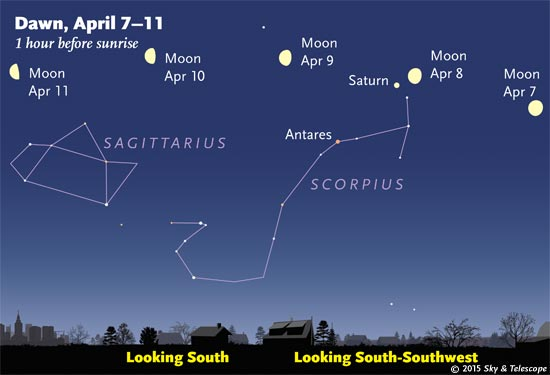 Early risers will see the waning Moon passing day by day over Scorpius and Sagittarius.