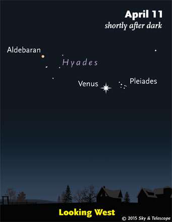The Pleiades and Venus at their closest.