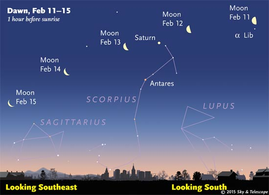 "If you're awake for these frigid dawns, watch the waning Moon walking above ""summer"" constellations now making their morning appearance."