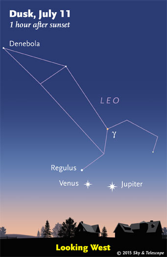 Venus and Jupiter move wider apart (and lower) every day, as Regulus draws closer to them.