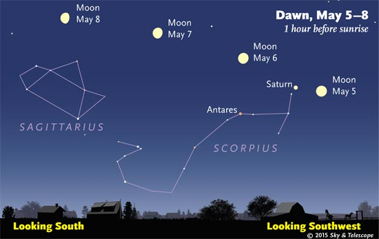 By dawn, the Moon, Saturn, and Scorpius have tinted way over on their journey to the  southwest.