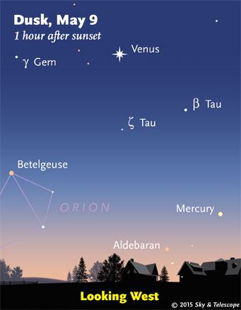 The Taurus horn stars have slid well below Venus since last week. Jupiter it outside the top left corner of this frame.