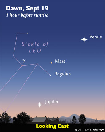 Venus, Mars, Regulus and Jupiter at dawn, Sept. 15, 2015