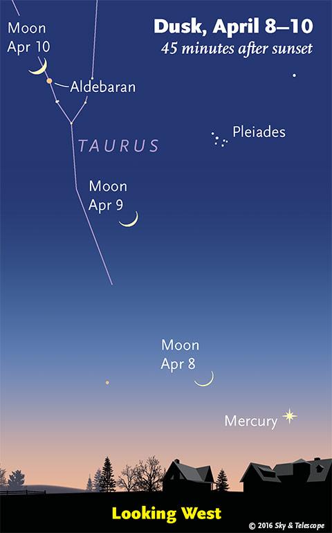 Moon and Mercury at dusk, April 8-10, 2016