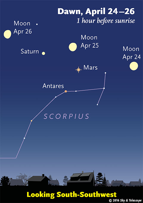 The Moon, Mars, Saturn, and Antares on the mornings of April 24-26, 2016