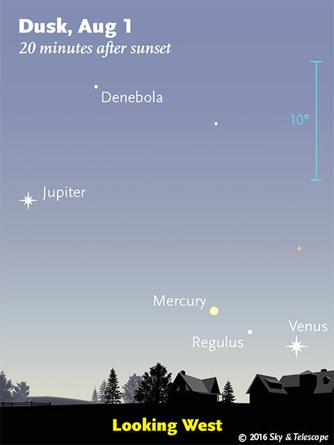 Jupiter, Mercury, Regulus, and Venus after sunset, Aug. 1, 2016