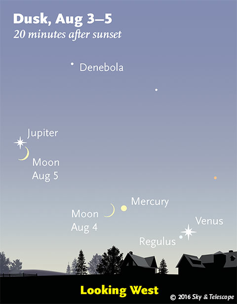 The Moon, Jupiter, Mercury, Regulus and Venus, Aug. 3-5, 2016