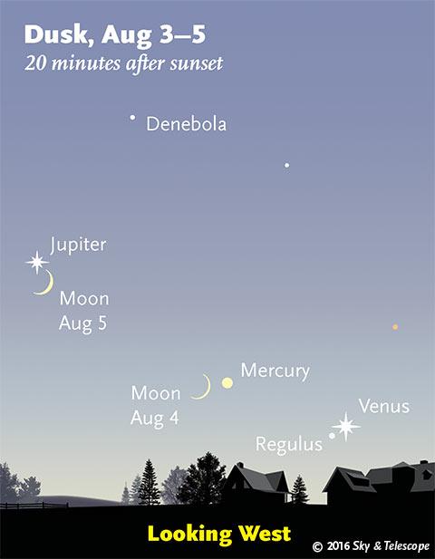 The Moon, Jupiter, Mercury, Regulus and Venus, Aug. 3-5, 2016