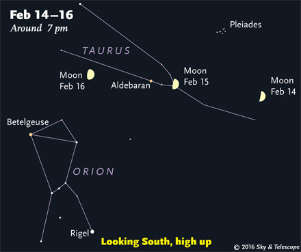 Moon, Taurus, Orion, Feb. 14-16, 2016