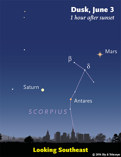 Mars, Saturn, Antares at dusk, late May - early June 2016