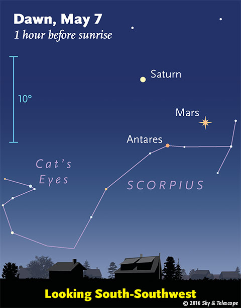 Mars, Saturn, Antares in the dawn, early May 2016.