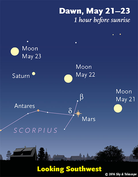 Moon, Mars, Antares, and Saturn in early dawn, May 21-23