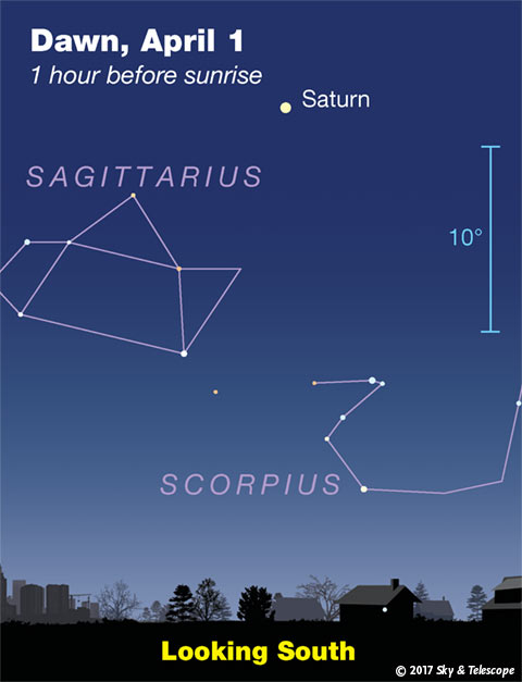 Saturn over Sagittarius at dawn, early April 2017