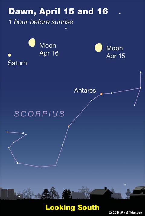 Moon, Saturn, Antares at dawn, April 15-16, 2017